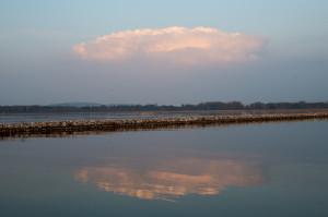 Die Schauerzelle zwischen Grenchen und Lyss um 18:23 Uhr, gesehen von der Mündung des Broyekanals in den Neuenburgersee