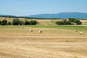 Jura und Mittelland brauchen dringend Regen, doch woher soll er kommen? Aufnahme vom 14.07.2015 zwischen Orbe und La Sarraz